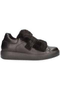 Chaussures Igi co 8799000(115594500)