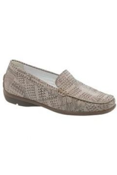 Loafers(116566843)