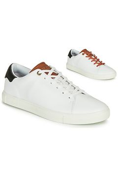 Chaussures Ted Baker LEEPOW(127993568)