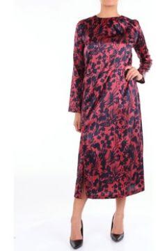 Robe Aglini HAITIF819(115539460)