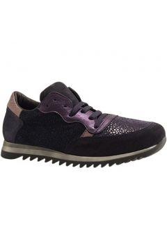 Chaussures Reqin\'s ELVIS MIX JANNOTS(115426306)