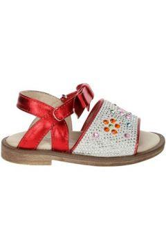 Sandales enfant Florens E2887(115571478)