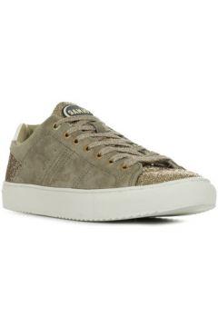 Chaussures Colmar Bradbury Lux 151(115413374)