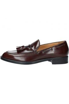 Chaussures Antica Cuoieria 20143(115504951)
