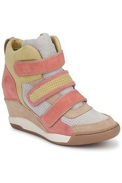 Chaussures Ash ALEX(115457446)