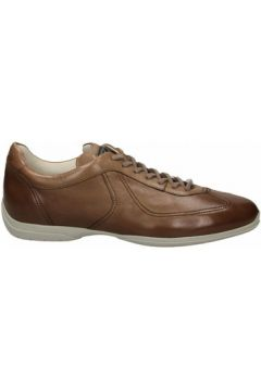 Chaussures Santoni PEDULA 7F INF. GOOSE PLUS(115565392)