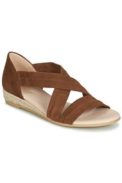 Sandales Betty London JISABEL(98463501)