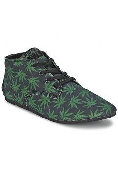 Chaussures Eleven Paris BASTEE(115453909)