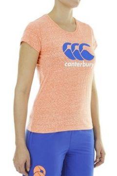 T-shirt Canterbury CCC(115645891)