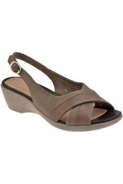 Chaussures escarpins Stonefly ChaussureVanityConfortCourestEscarpins(127857760)