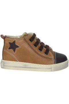 Chaussures enfant Falcotto 0012012835.01.1D18(115572999)