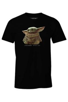 T-shirt Cotton Division T-shirt Star Wars The Mandalorian - Baby Yoda Unkown Species(115631369)