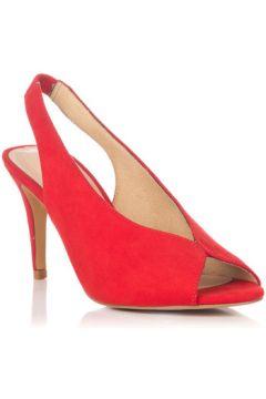 Chaussures escarpins Zapp 9121(115528795)