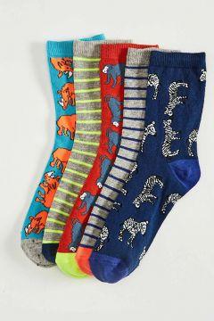 Çocuk Erkek Çocuk Soket Çorap 5\'li(127115471)