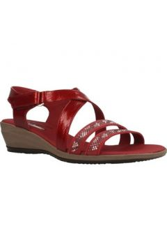Sandales 24 Hrs 24077 24H(101627088)