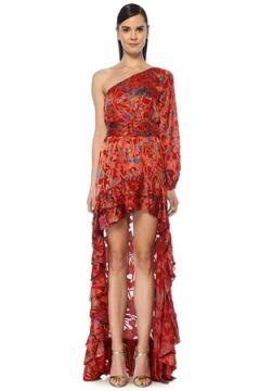Alexis Kadın Marseille Kırmızı Asimetrik Çiçekli Maksi Elbise L EU(108810019)