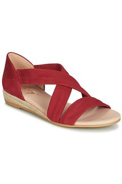 Sandales Betty London JISABEL(98463499)