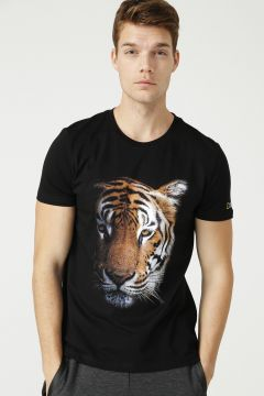 National Geographic T-Shirt(123949346)