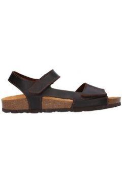 Sandales Yokono Macam-011 Hombre Marron(127856358)