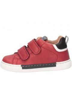 Chaussures enfant Romagnoli 4191-812 Basket Enfant Edge \'(127991194)