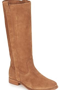Bottes André THEE(101535512)