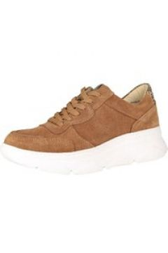Sneaker-Low Trend-Sneaker COX braun-mittel(116400048)
