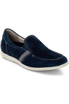Chaussures Lloyd Clemente(115501401)
