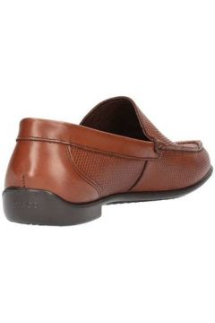 Chaussures Igi co 7701600(115594328)
