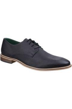 Chaussures Lambretta Scotts King(88463122)