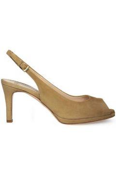 Chaussures escarpins Roberto Festa Milano 7903(101554013)