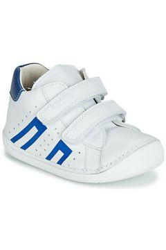 Chaussures enfant Pablosky 44304(115411911)